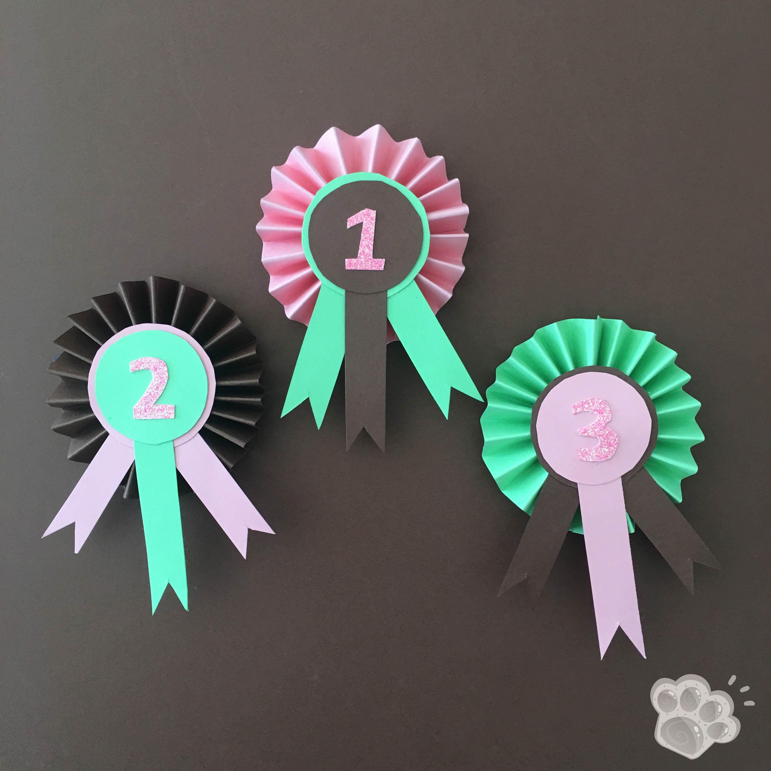 concours de sauts d'obstacles anniversaire poney